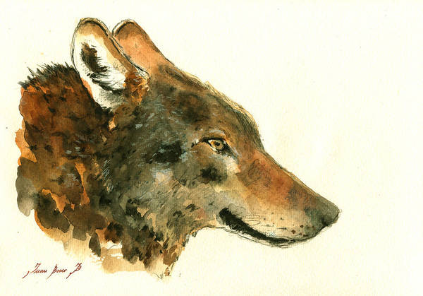 Wolf Painting - Wolf Portrait by Juan  Bosco
