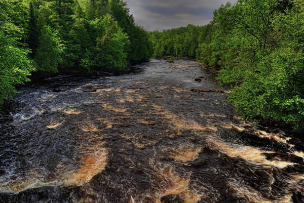 Photograph - Wolf River Summer Green by Dale Kauzlaric