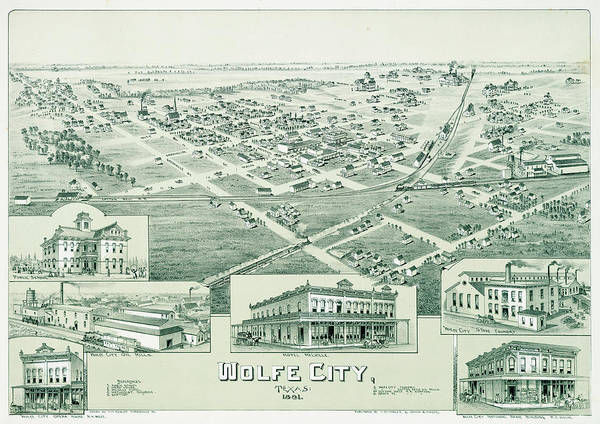 Wall Art - Painting - Antique Map Of Wolfe City, Texas 1891 by Thaddeus Mortimer Fowler