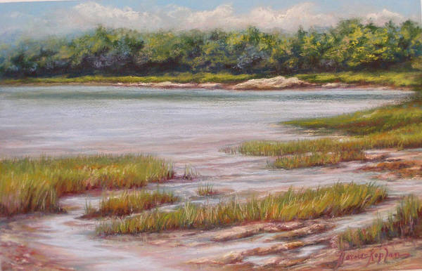 Pastel - Wolfe's Neck State Park by Denise Horne-Kaplan