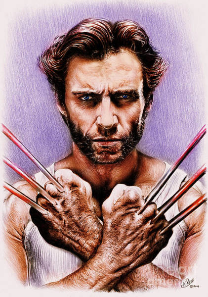 Wolverines Drawing - Wolverine Adamantium Version 2 by Andrew Read