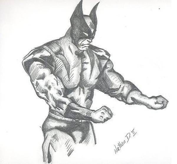 Wolverines Drawing - Wolverine by Nathan Denham II