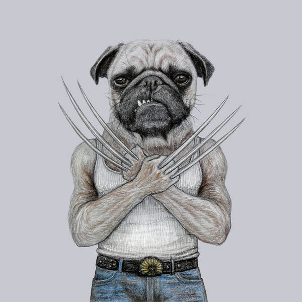 Wolverines Drawing - Wolverine Pug by Wind Zao