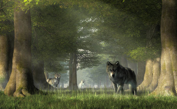 Susi Wall Art - Digital Art - Wolves In The Forest by Daniel Eskridge