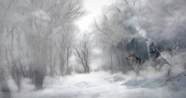 Art Print featuring the photograph Wolves In The Mist by Andrea Kollo