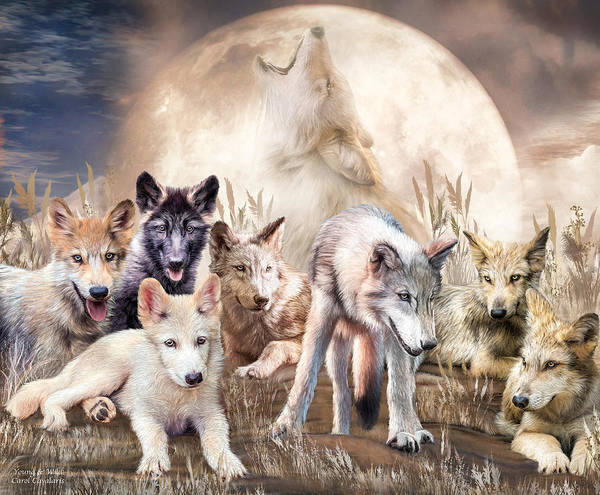Mixed Media - Wolves - Young And Wild by Carol Cavalaris
