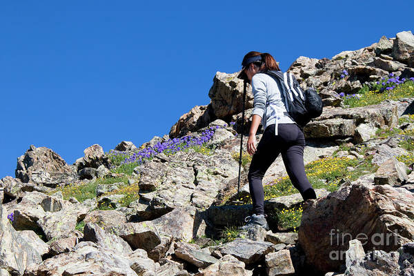 Photograph - Woman Hiking The Mount Massive Summit by Steve Krull