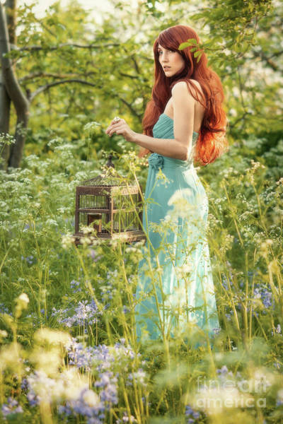 Wall Art - Photograph - Woman Holding A Birdcage In Spring Bluebells by Amanda Elwell