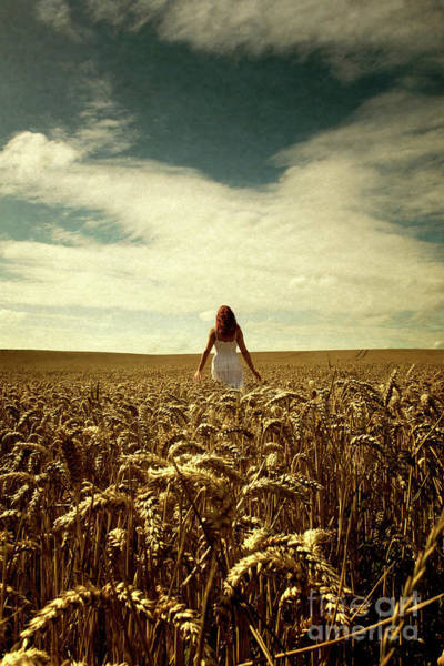 Photograph - Woman In Corn Field by Clayton Bastiani