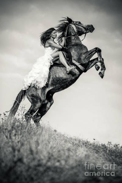 Photograph - Woman In Dress Riding Chestnut Black Rearing Stallion by Dimitar Hristov