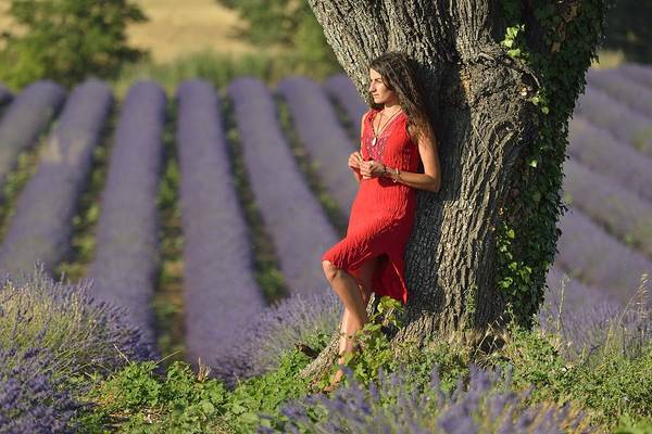 Wall Art - Photograph - Woman In Lavender Field by Christian Heeb