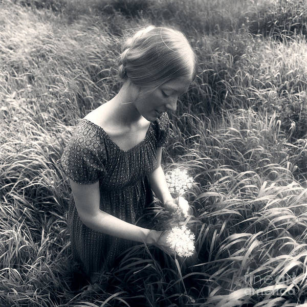 Queen Anne Style Photograph - Woman Picking Wildflowers, C.1970s by H. Armstrong Roberts/ClassicStock