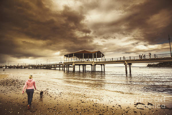 Canine Photograph - Woman Walking Dog On Stormy Beach by Jorgo Photography - Wall Art Gallery