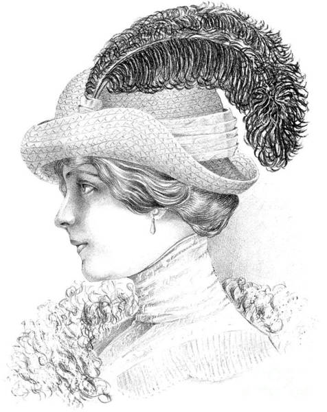 Scarf Drawing - Women's Fashion Plate Depicting Hat By Robert Funke, Sketch, 1910 by Austrian School