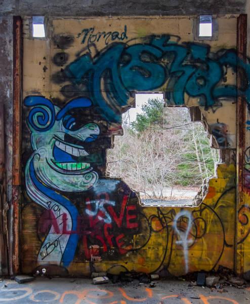 Photograph - Wompatuck Graffiti Man by Brian MacLean