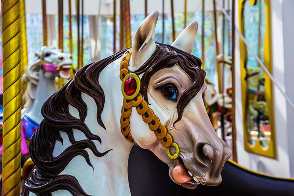 Carousels Photograph - Wonderful Carrousel Horse Portrait  by Garry Gay