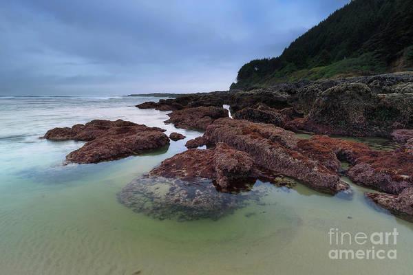 Wall Art - Photograph - Wonderful Coastline by Masako Metz