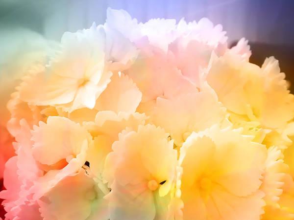 Photograph - Wonderful Colors by Lutz Baar