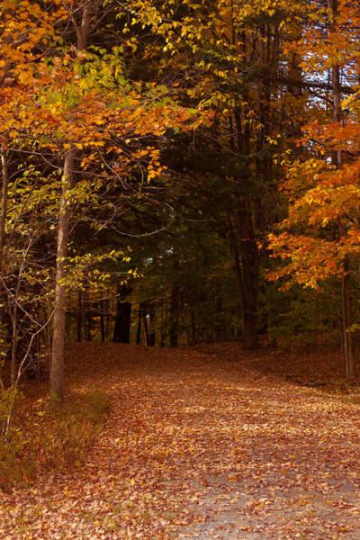 Smugglers Notch Photograph - Wonderful Fall Colors by Robert Torkomian