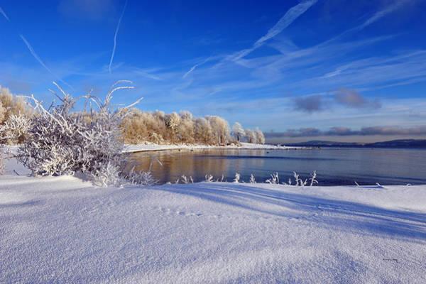 Photograph - Wondrous Winter by Randi Grace Nilsberg