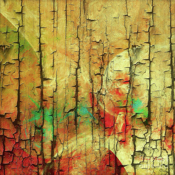 Digital Art - Wood Abstract by Deborah Benoit