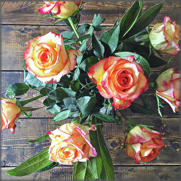 Peach Flower Wall Art - Painting - Wood And Roses by Shadia Derbyshire