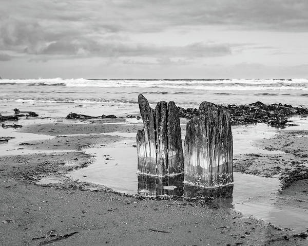 Photograph - Wood And Sea #2 Bw by Robert Sidebottom