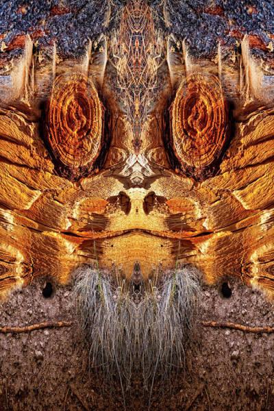 Digital Art - Wood Chuck by Becky Titus
