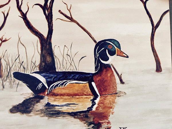 Painting - Wood Duck No. 2 by Donald Paczynski