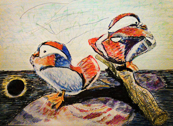 Eclipse Mixed Media - Wood Ducks In Eclipse Reflection by Barbara Searcy