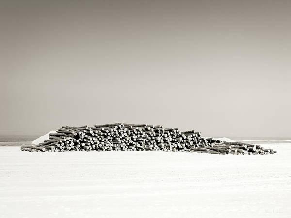 Wood Pile Photograph - Wood Logs by Wim Lanclus