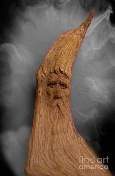 Troll Photograph - Wood Nymph II by Al Bourassa
