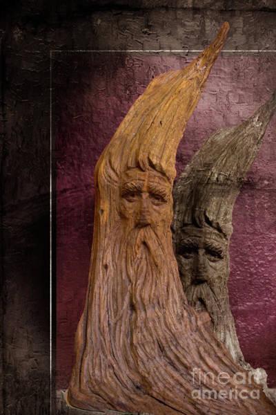 Troll Photograph - Wood Nymphs by Al Bourassa