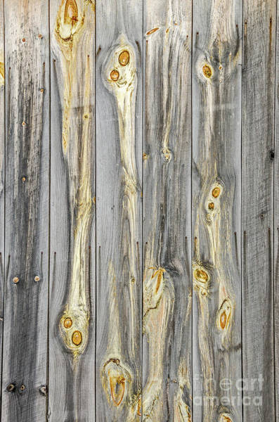 Photograph - Wood Patterns With Character On An Old Barn by Sue Smith