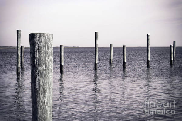 Wall Art - Photograph - Wood Pilings In Monotone by Colleen Kammerer