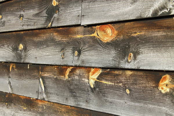 Photograph - Wood Planks 2 by Frank Romeo