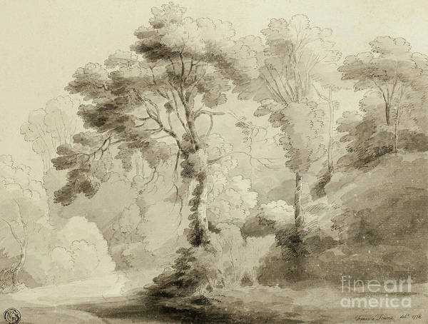 Crayon Drawing - Wooded Landscape by Francis Towne