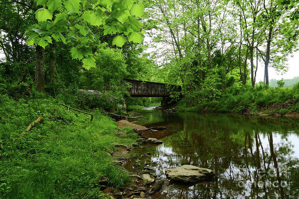 Photograph - Wooded Valley Of The Patapsco River North Branch Maryland by James Brunker