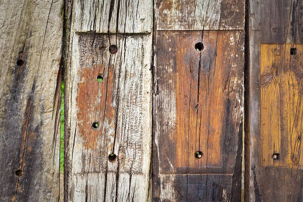 Rotten Wall Art - Photograph - Wooden Background by Tom Gowanlock
