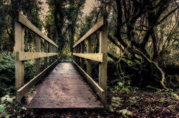 Photograph - Wooden Bridge by Nick Bywater