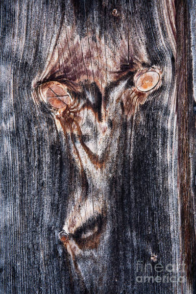 Photograph - Wooden Face by Heiko Koehrer-Wagner