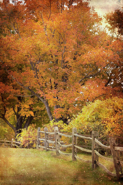 Photograph - Wooden Fence In Autumn by Joann Vitali