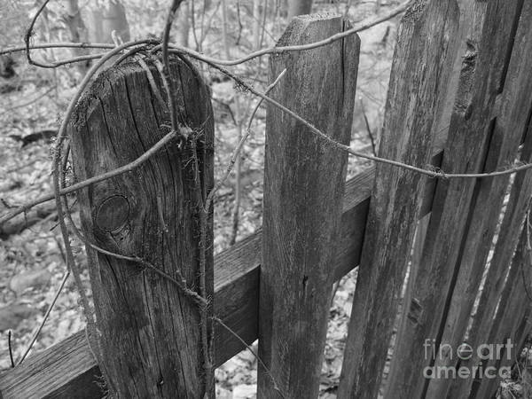 Photograph - Wooden Fence by Jeff Breiman