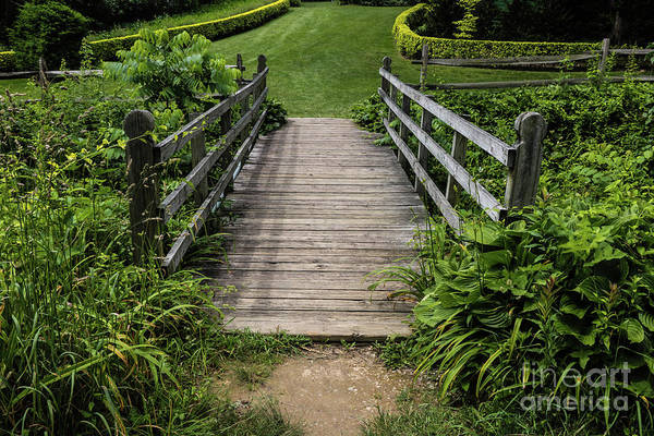 Photograph - Wooden Footbridge by Thomas Marchessault