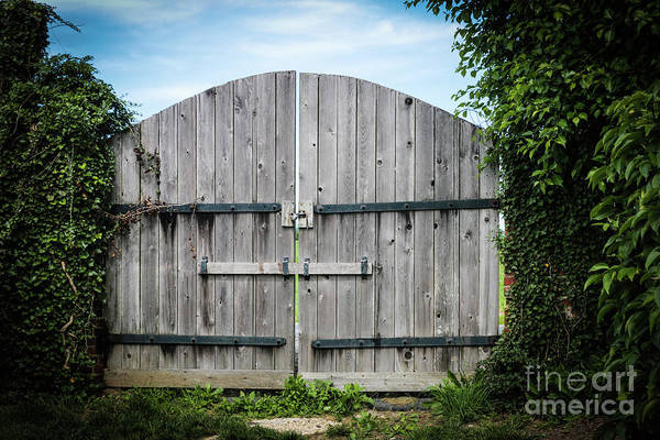 Photograph - Wooden Gate In Northern Maryland by Thomas Marchessault