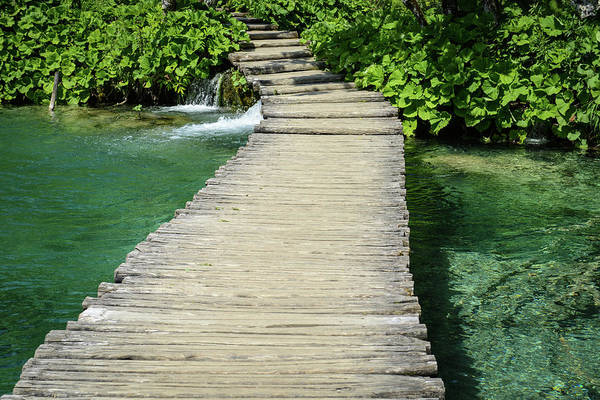 Photograph - Wooden Hiking Path In Plitvice National Park In Croatia by Brandon Bourdages
