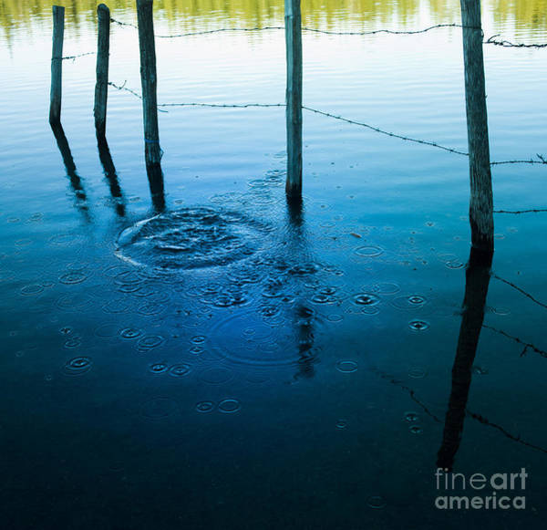 Fence Post Photograph - Wooden Post In A Lake by Bernard Jaubert