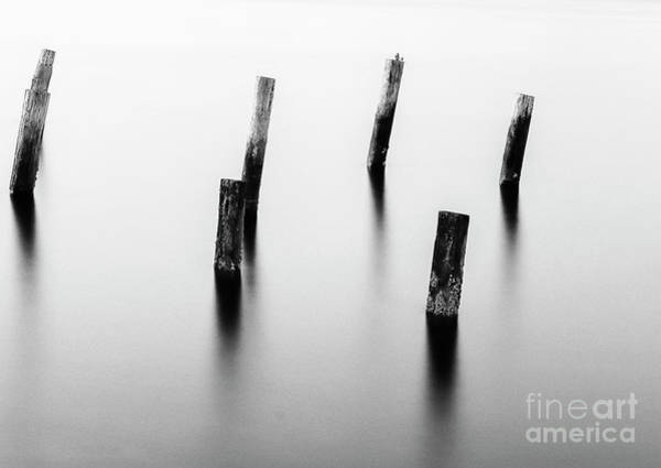 Photograph - Wooden Post by Sal Ahmed