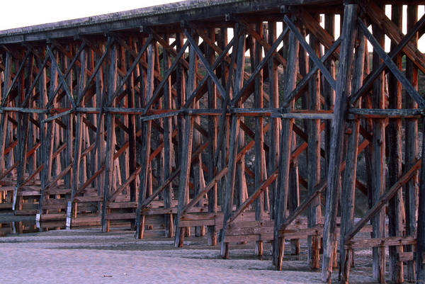 Fort Bragg Photograph - Wooden Railroad Bridge - Fort Bragg California by Soli Deo Gloria Wilderness And Wildlife Photography