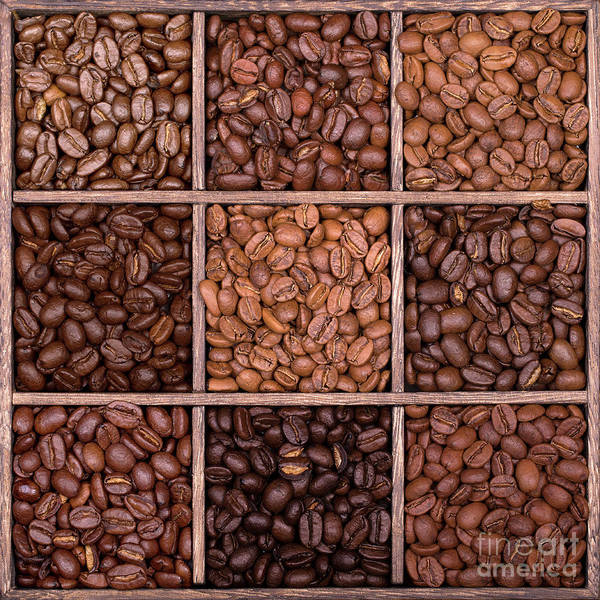 Wall Art - Photograph - Wooden Storage Box Filled With Coffee Beans by Jane Rix